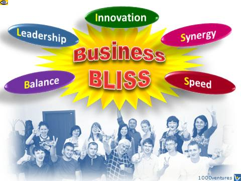 Business BLISS - Balance, Leadership, Innovation, Synergy, Speed by Vadim Kotelnikov