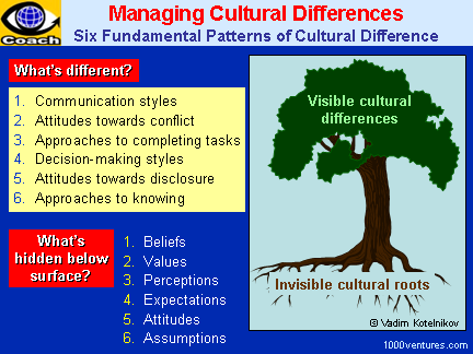 Cultural Differences: visible and invisible